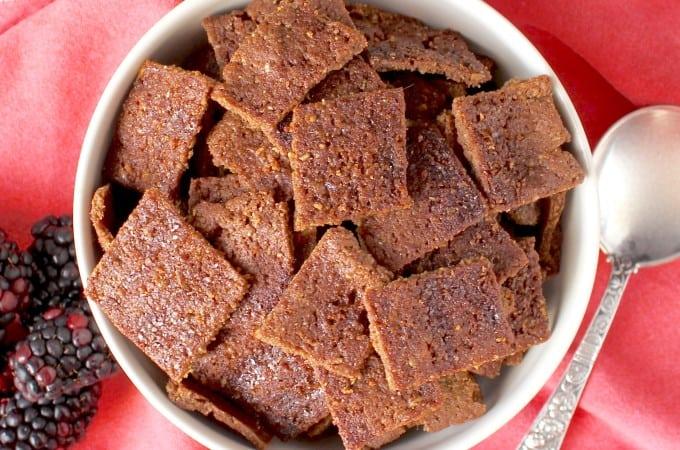 Crunchy Cinnamon Toast Squares (Paleo)