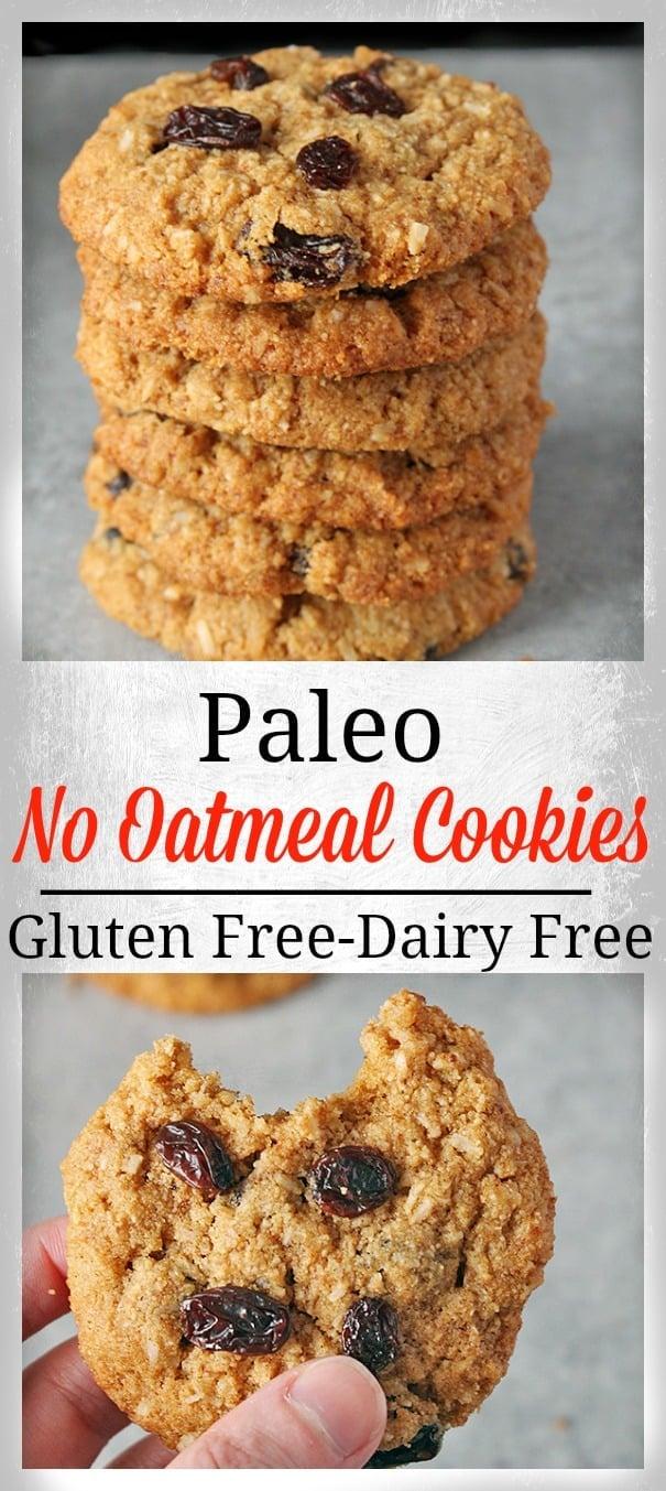 Paleo No Oatmeal Cookies