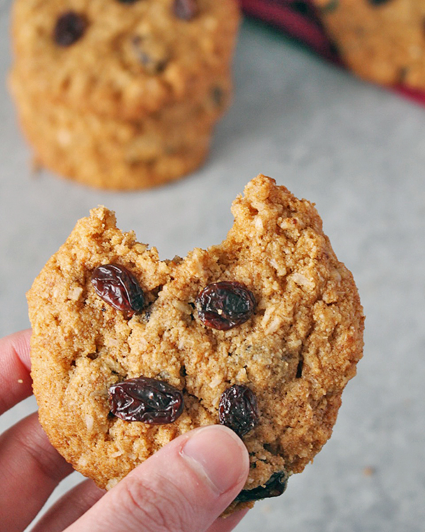 Paleo No Oatmeal Raisin Cookies