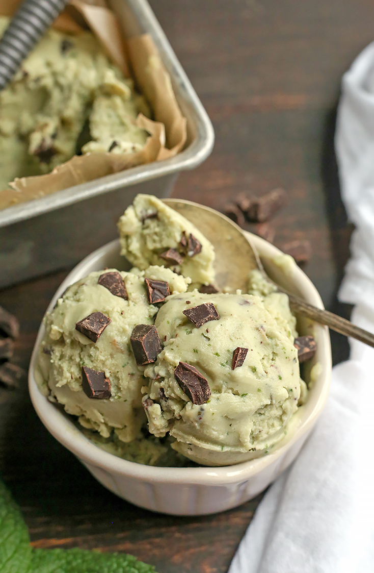 This Paleo Mint Chocolate Chip Ice Cream is easy to make and so delicious! Just 6 simple ingredients, dairy free, egg free, naturally colored and sweetened, and low FODMAP.